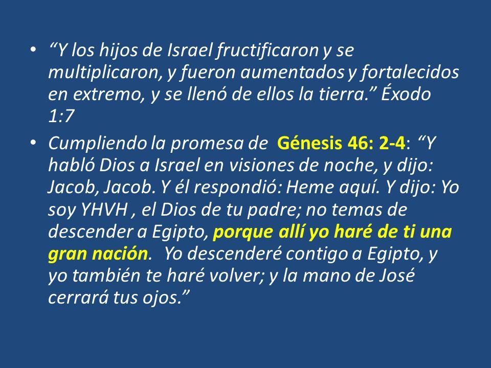 Y los hijos de Israel fructificaron y se multiplicaron, y fueron aumentados y fortalecidos en extremo, y se llenó de ellos la tierra. Éxodo 1:7 Cumpli