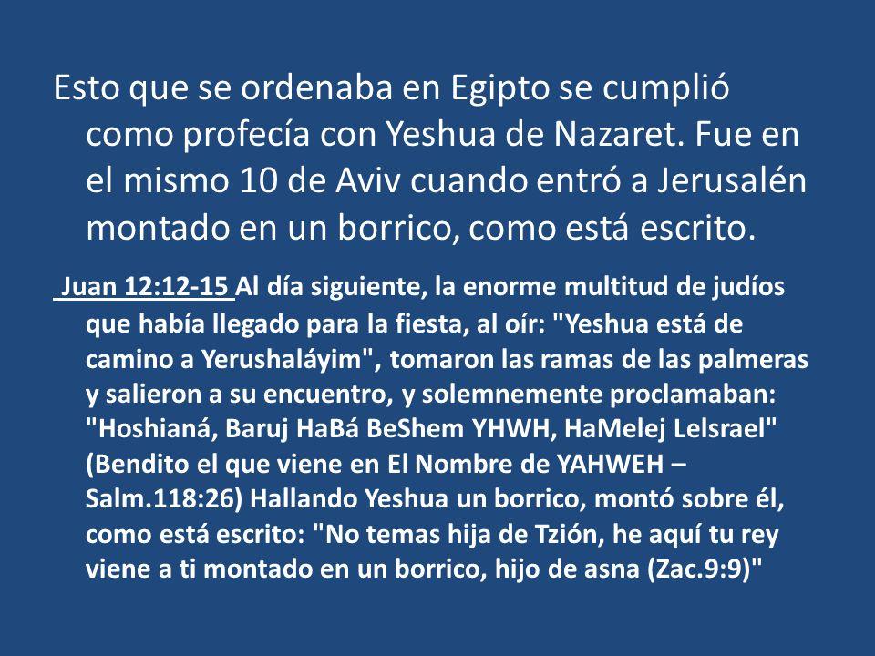 Esto que se ordenaba en Egipto se cumplió como profecía con Yeshua de Nazaret. Fue en el mismo 10 de Aviv cuando entró a Jerusalén montado en un borri