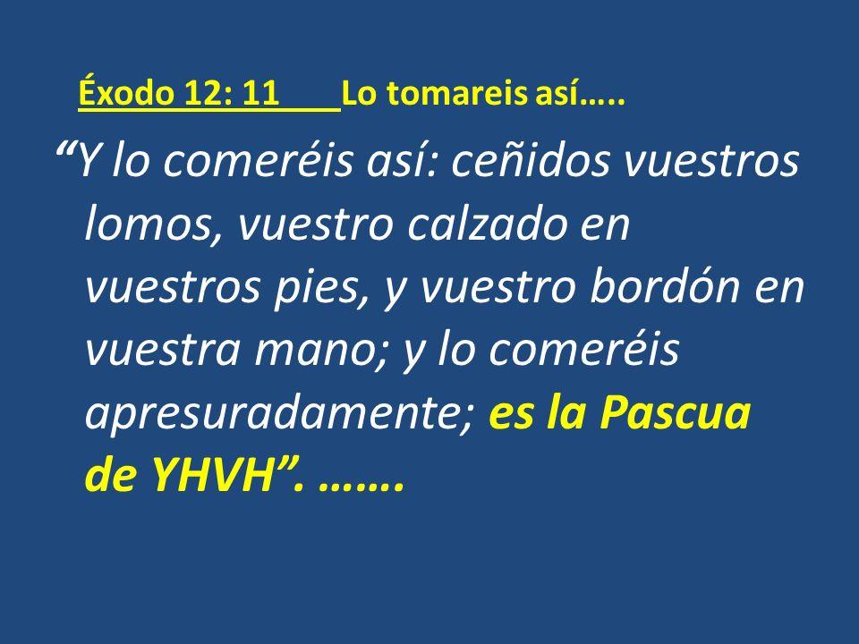 Éxodo 12: 11 Lo tomareis así….. Y lo comeréis así: ceñidos vuestros lomos, vuestro calzado en vuestros pies, y vuestro bordón en vuestra mano; y lo co