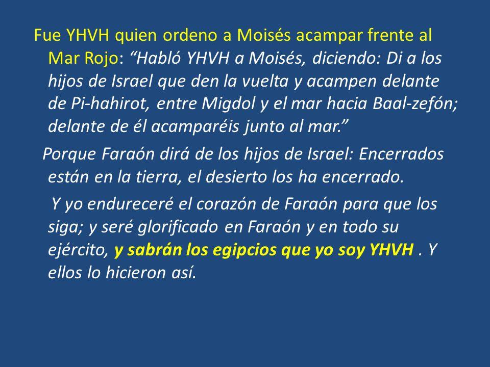 Fue YHVH quien ordeno a Moisés acampar frente al Mar Rojo: Habló YHVH a Moisés, diciendo: Di a los hijos de Israel que den la vuelta y acampen delante