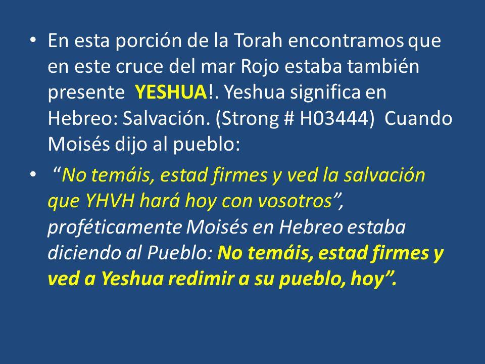 En esta porción de la Torah encontramos que en este cruce del mar Rojo estaba también presente YESHUA!. Yeshua significa en Hebreo: Salvación. (Strong