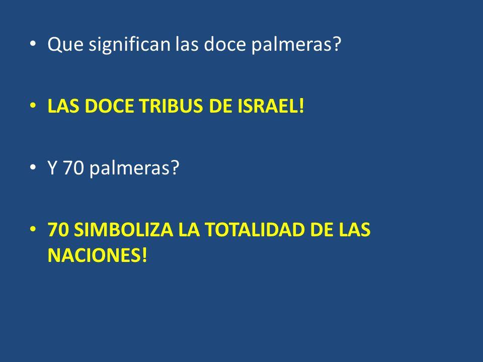 Que significan las doce palmeras? LAS DOCE TRIBUS DE ISRAEL! Y 70 palmeras? 70 SIMBOLIZA LA TOTALIDAD DE LAS NACIONES!