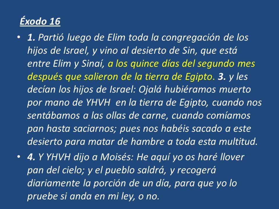 Éxodo 16 1. Partió luego de Elim toda la congregación de los hijos de Israel, y vino al desierto de Sin, que está entre Elim y Sinaí, a los quince día