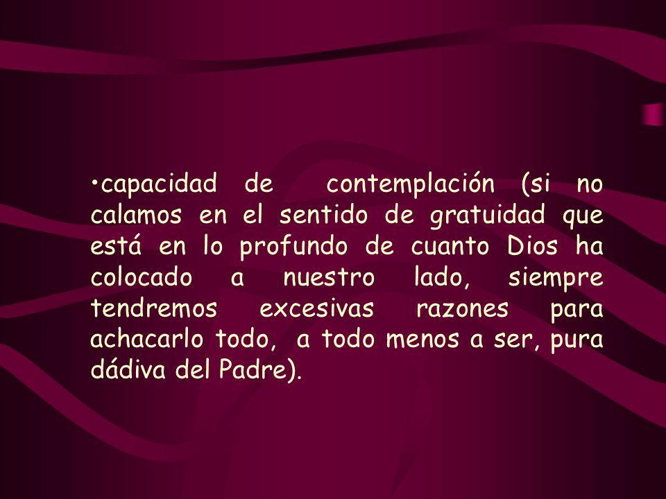 capacidad de contemplación (si no calamos en el sentido de gratuidad que está en lo profundo de cuanto Dios ha colocado a nuestro lado, siempre tendre