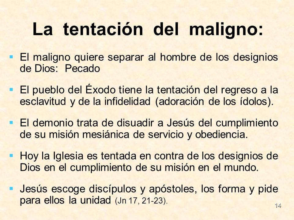 14 El maligno quiere separar al hombre de los designios de Dios: Pecado El pueblo del Éxodo tiene la tentación del regreso a la esclavitud y de la inf
