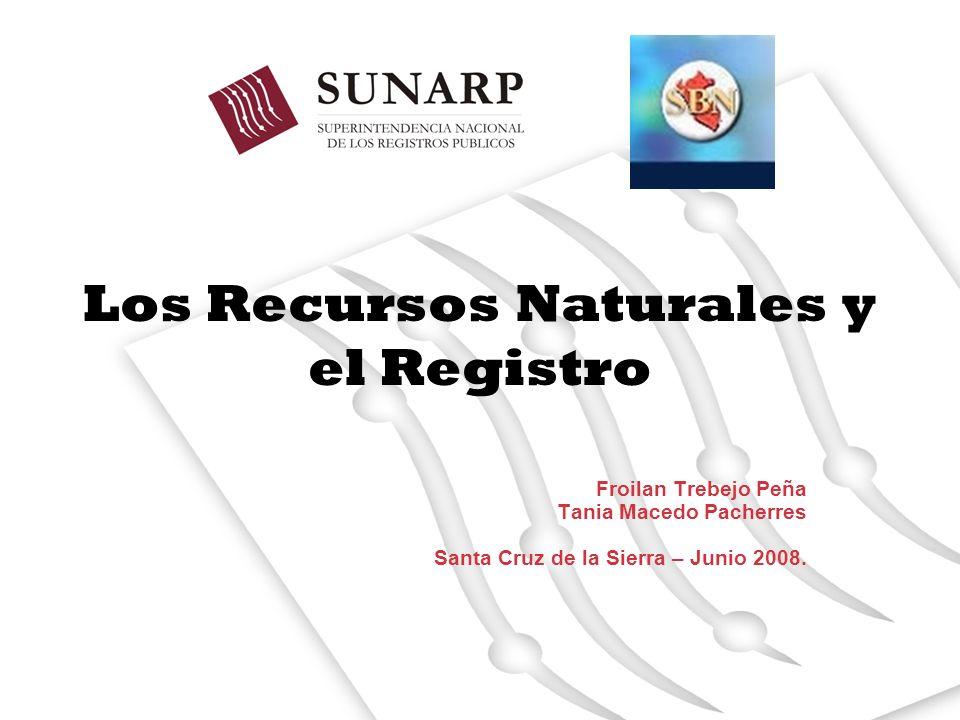 Los Recursos Naturales y el Registro Froilan Trebejo Peña Tania Macedo Pacherres Santa Cruz de la Sierra – Junio 2008.