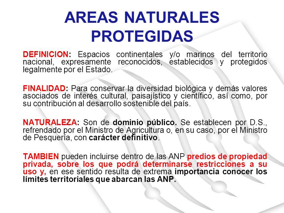 AREAS NATURALES PROTEGIDAS DEFINICION: Espacios continentales y/o marinos del territorio nacional, expresamente reconocidos, establecidos y protegidos