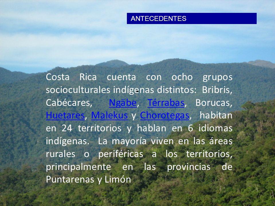 ANTECEDENTES. Costa Rica cuenta con ocho grupos socioculturales indígenas distintos: Bribris, Cabécares, Ngäbe, Térrabas, Borucas, Huetares, Malekus y