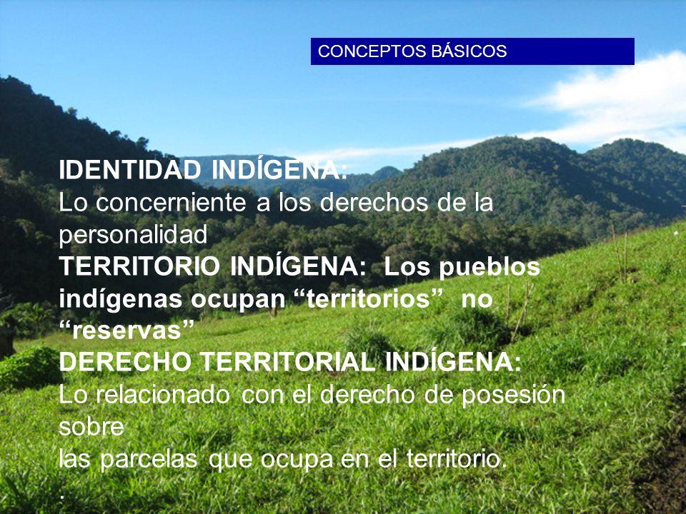 IDENTIDAD INDÍGENA: Lo concerniente a los derechos de la personalidad TERRITORIO INDÍGENA: Los pueblos indígenas ocupan territorios no reservas DERECH
