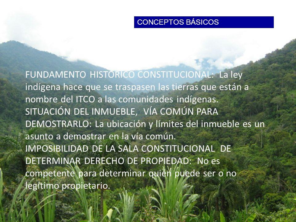 FUNDAMENTO HISTÓRICO: La Ley de Baldíos de 1939 ya declaraba las tierras indígenas como colectivas. FUNDAMENTO HISTÓRICO CONSTITUCIONAL: La ley indíge