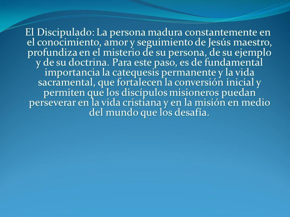 DISCÍPULOS-MISIONEROS DE CRISTO