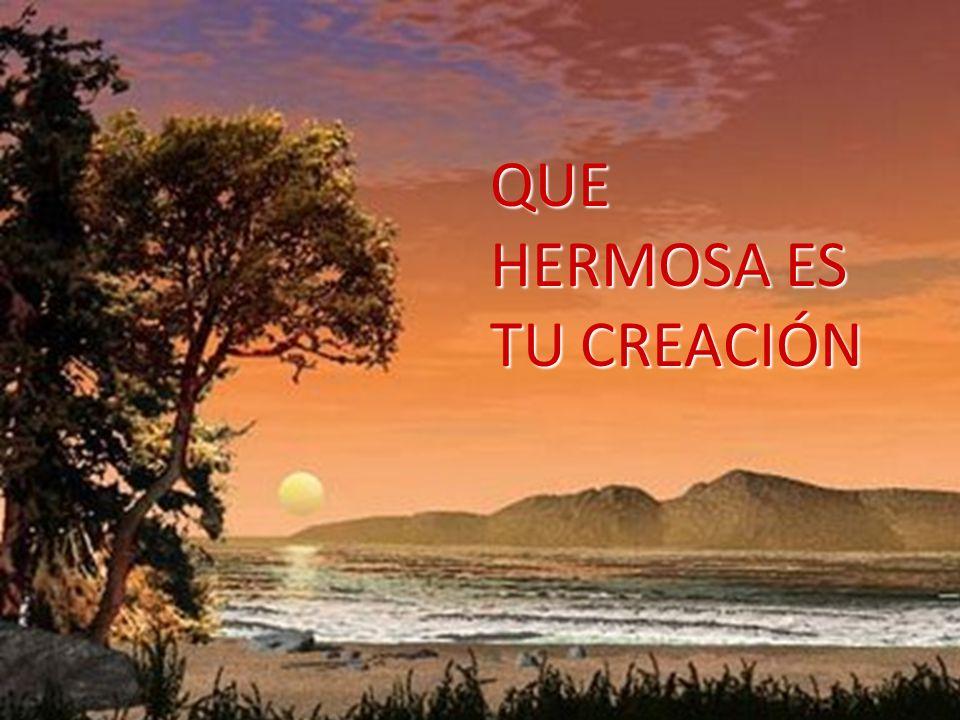 11 Dijo Dios: «Produzca la tierra vegetación: hierbas que den semillas y árboles frutales que den fruto, de su especie, con su semilla dentro, sobre l