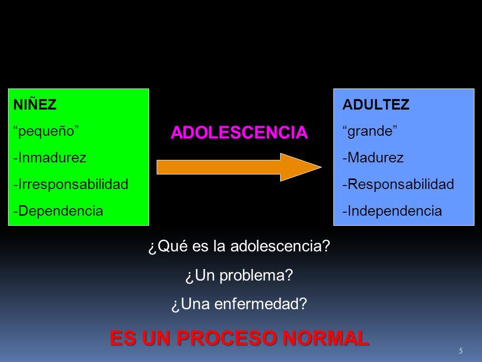 NIÑEZ pequeño -Inmadurez -Irresponsabilidad -Dependencia ADULTEZ grande -Madurez -Responsabilidad -Independencia ADOLESCENCIA ¿Qué es la adolescencia?