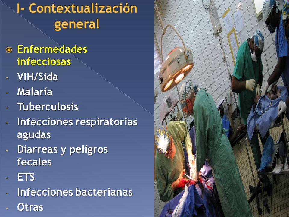 Enfermedades infecciosas Enfermedades infecciosas - VIH/Sida - Malaria - Tuberculosis - Infecciones respiratorias agudas - Diarreas y peligros fecales