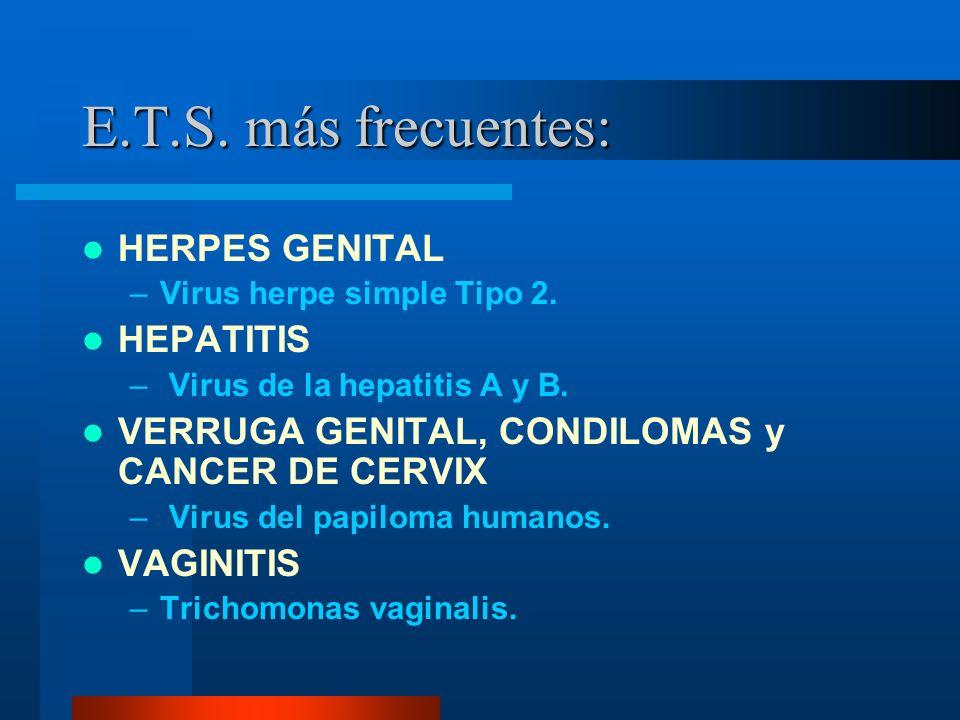 E.T.S. más frecuentes: HERPES GENITAL –Virus herpe simple Tipo 2. HEPATITIS – Virus de la hepatitis A y B. VERRUGA GENITAL, CONDILOMAS y CANCER DE CER
