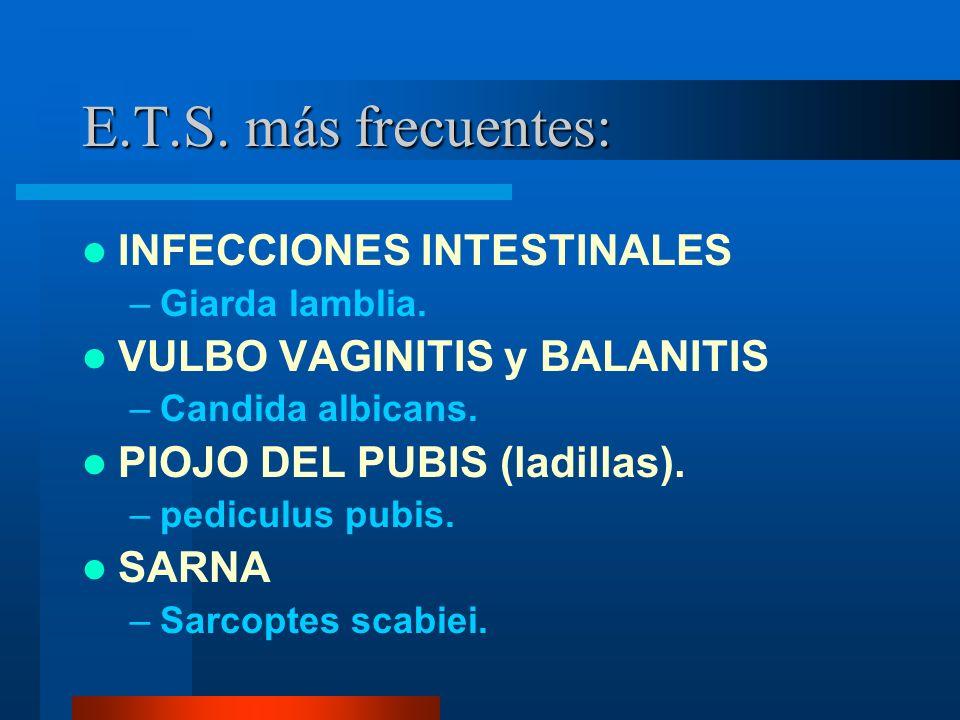 E.T.S. más frecuentes: INFECCIONES INTESTINALES –Giarda lamblia. VULBO VAGINITIS y BALANITIS –Candida albicans. PIOJO DEL PUBIS (ladillas). –pediculus