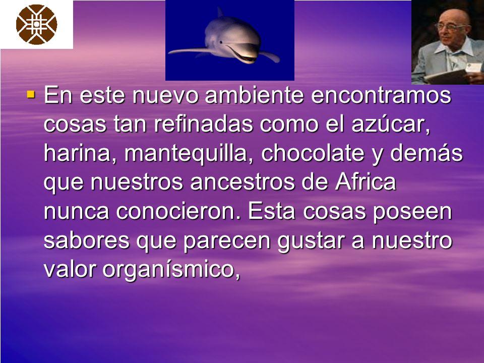En este nuevo ambiente encontramos cosas tan refinadas como el azúcar, harina, mantequilla, chocolate y demás que nuestros ancestros de Africa nunca c