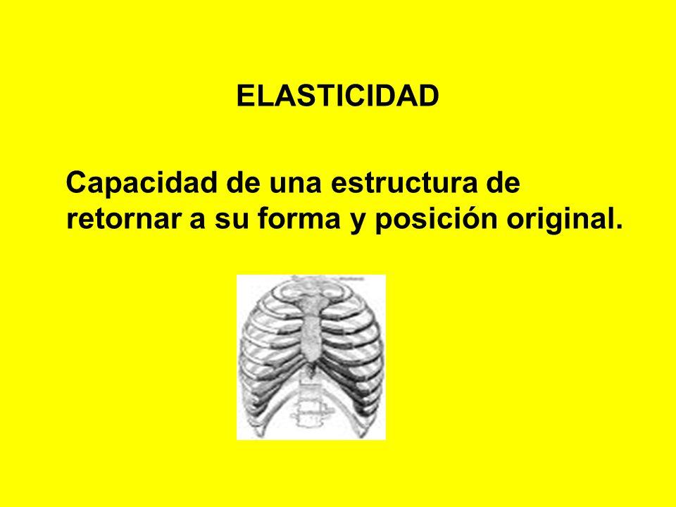 ELASTICIDAD Capacidad de una estructura de retornar a su forma y posición original.