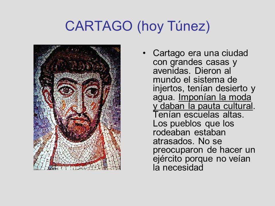 CARTAGO (hoy Túnez) Cartago era una ciudad con grandes casas y avenidas. Dieron al mundo el sistema de injertos, tenían desierto y agua. Imponían la m