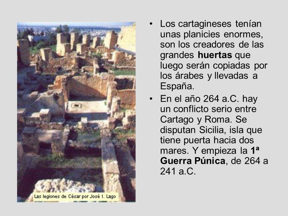Los cartagineses tenían unas planicies enormes, son los creadores de las grandes huertas que luego serán copiadas por los árabes y llevadas a España.