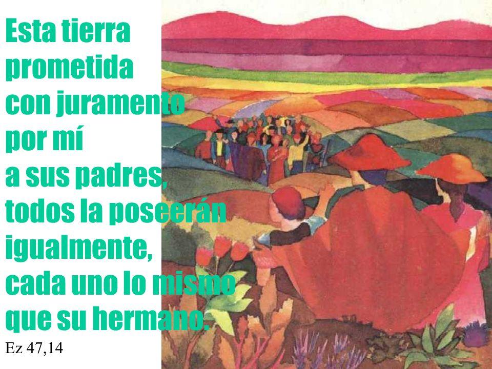 Esta tierra prometida con juramento por mí a sus padres, todos la poseerán igualmente, cada uno lo mismo que su hermano. Ez 47,14