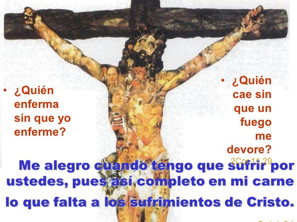 Me alegro cuando tengo que sufrir por ustedes, pues así completo en mi carne lo que falta a los sufrimientos de Cristo. Me alegro cuando tengo que suf
