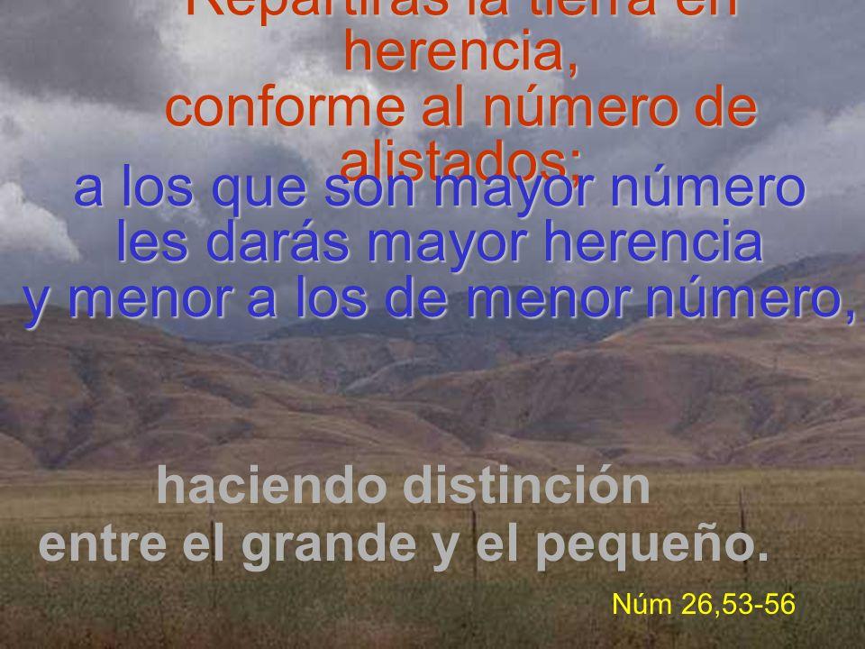 Repartirás la tierra en herencia, conforme al número de alistados; haciendo distinción entre el grande y el pequeño. Núm 26,53-56 a los que son mayor