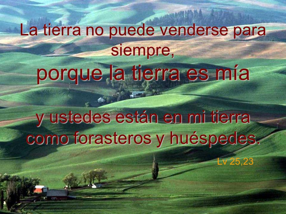 La tierra no puede venderse para siempre, porque la tierra es mía y ustedes están en mi tierra como forasteros y huéspedes. La tierra no puede venders