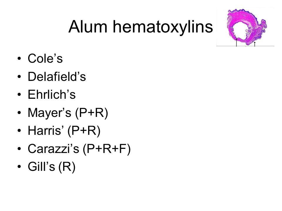 Alum hematoxylins Coles Delafields Ehrlichs Mayers (P+R) Harris (P+R) Carazzis (P+R+F) Gills (R)