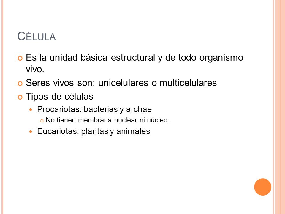 C ÉLULA Es la unidad básica estructural y de todo organismo vivo. Seres vivos son: unicelulares o multicelulares Tipos de células Procariotas: bacteri