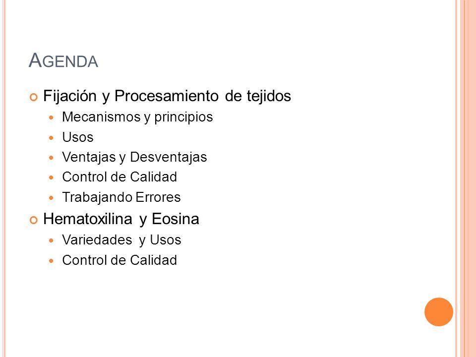 A GENDA Fijación y Procesamiento de tejidos Mecanismos y principios Usos Ventajas y Desventajas Control de Calidad Trabajando Errores Hematoxilina y E