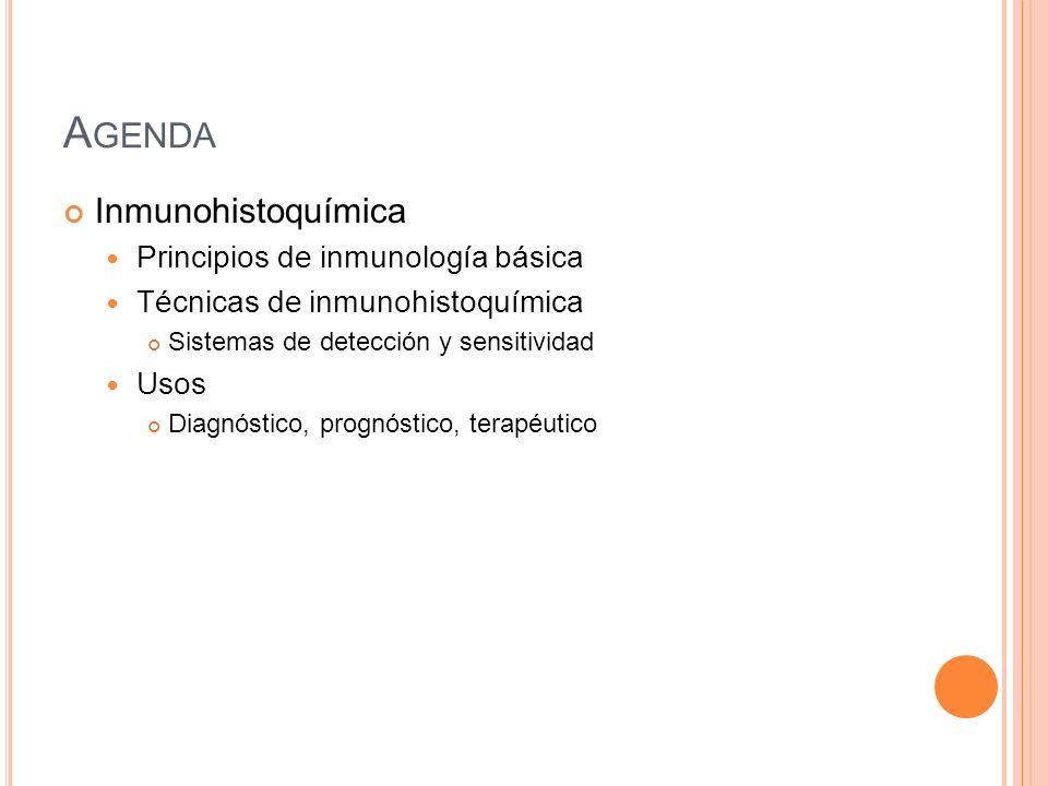 A GENDA Inmunohistoquímica Principios de inmunología básica Técnicas de inmunohistoquímica Sistemas de detección y sensitividad Usos Diagnóstico, prog