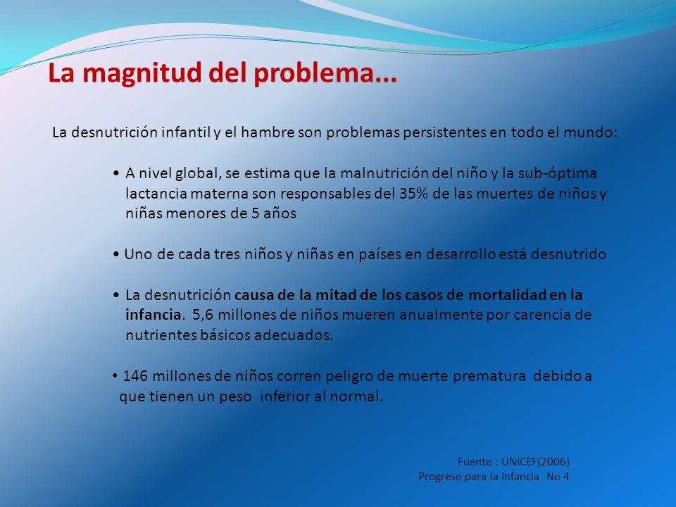 El peso de la desnutrición en América Latina 52 millones de habitantes de América Latina y el Caribe sub-nutridos 9 millones de niños menores de 5 años con desnutrición crónica 22.3 millones de niños preescolares, 33 millones de mujeres en edad fértil y 3.6 millones de gestantes con anemia
