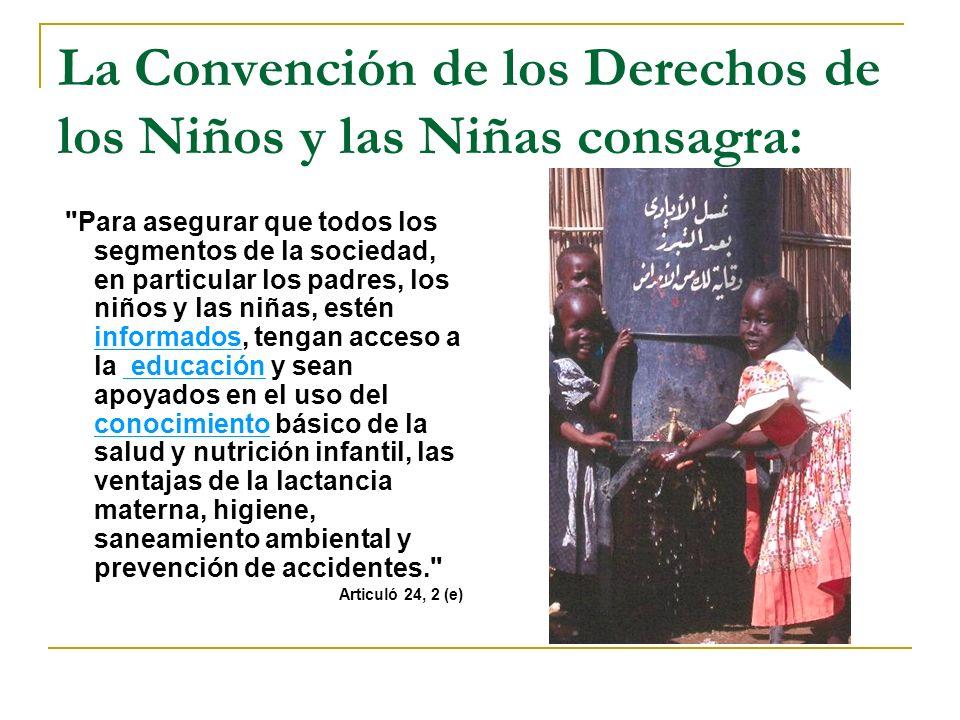 Las Metas de Desarrollo del Milenio (MDGs).
