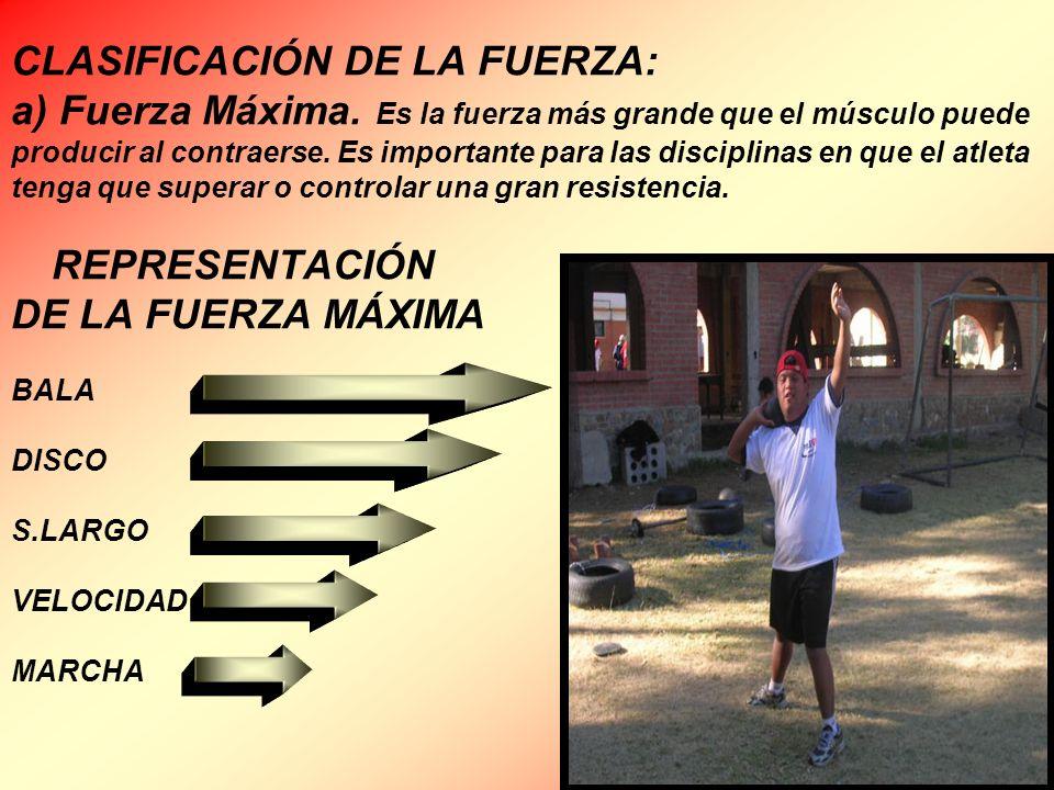 CLASIFICACIÓN DE LA FUERZA: a) Fuerza Máxima. Es la fuerza más grande que el músculo puede producir al contraerse. Es importante para las disciplinas