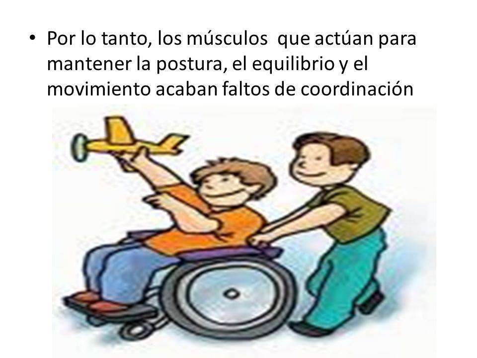 Por lo tanto, los músculos que actúan para mantener la postura, el equilibrio y el movimiento acaban faltos de coordinación