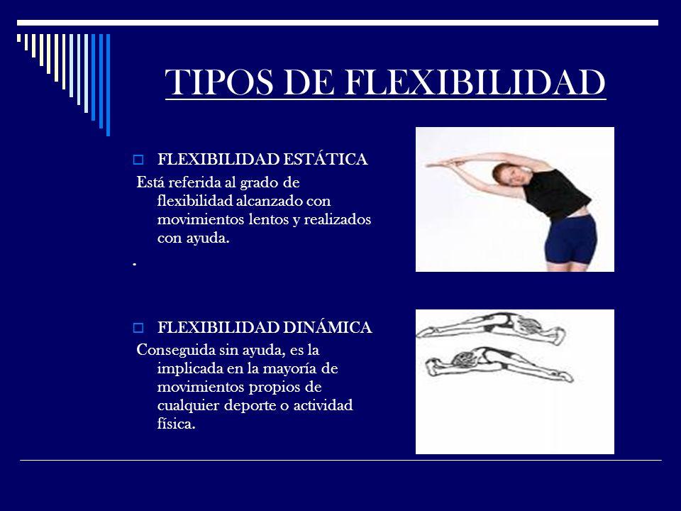 TIPOS DE FLEXIBILIDAD FLEXIBILIDAD ESTÁTICA Está referida al grado de flexibilidad alcanzado con movimientos lentos y realizados con ayuda..