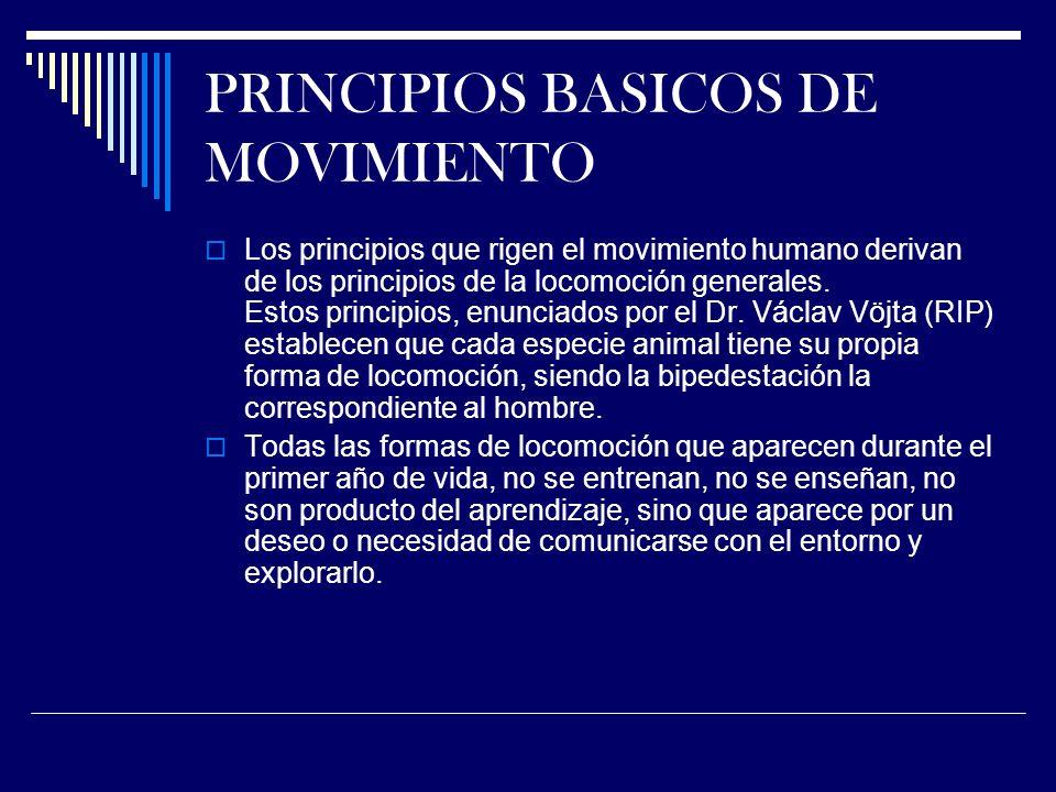 PRINCIPIOS BASICOS DE MOVIMIENTO Los principios que rigen el movimiento humano derivan de los principios de la locomoción generales.