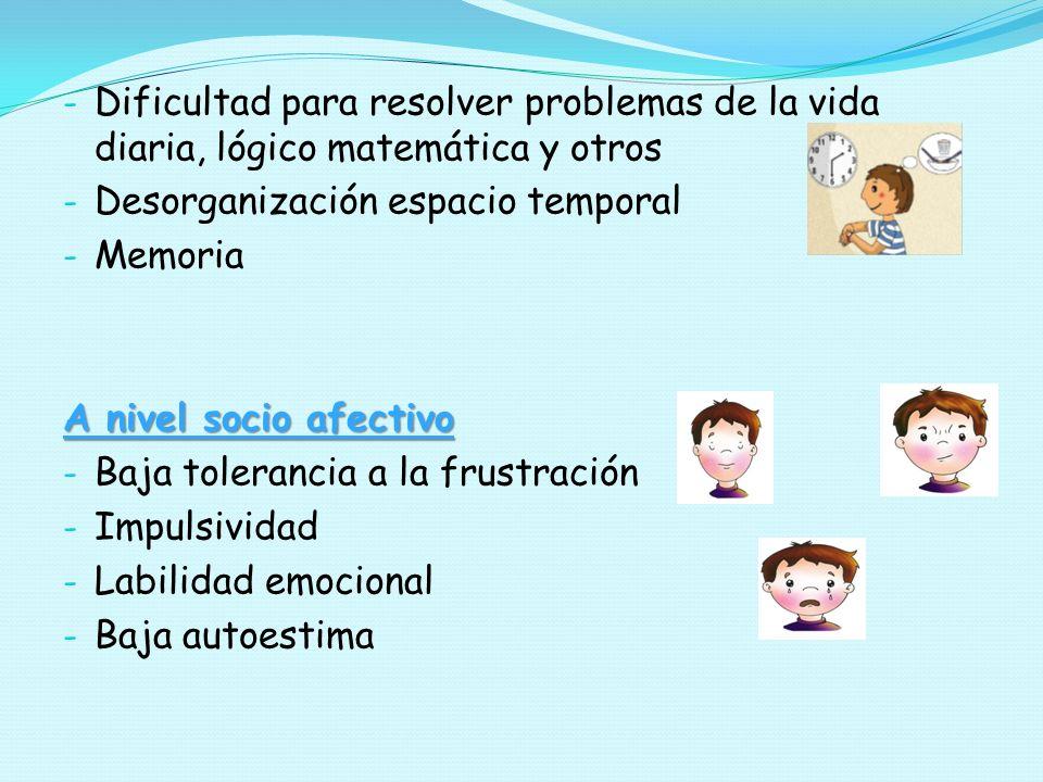 - Dificultad para resolver problemas de la vida diaria, lógico matemática y otros - Desorganización espacio temporal - Memoria A nivel socio afectivo