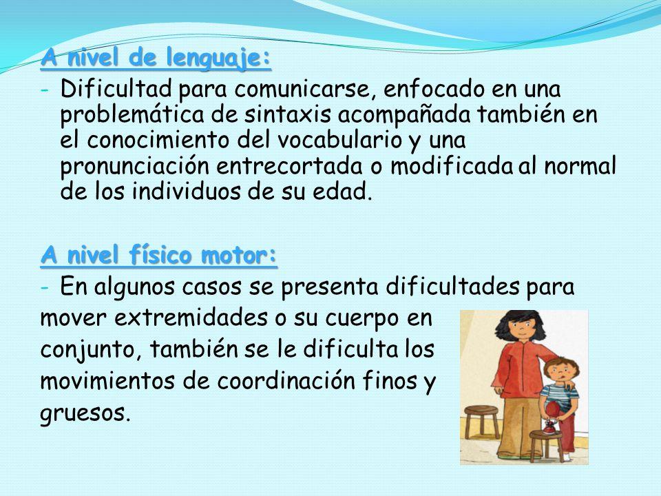 A nivel de lenguaje: - Dificultad para comunicarse, enfocado en una problemática de sintaxis acompañada también en el conocimiento del vocabulario y u