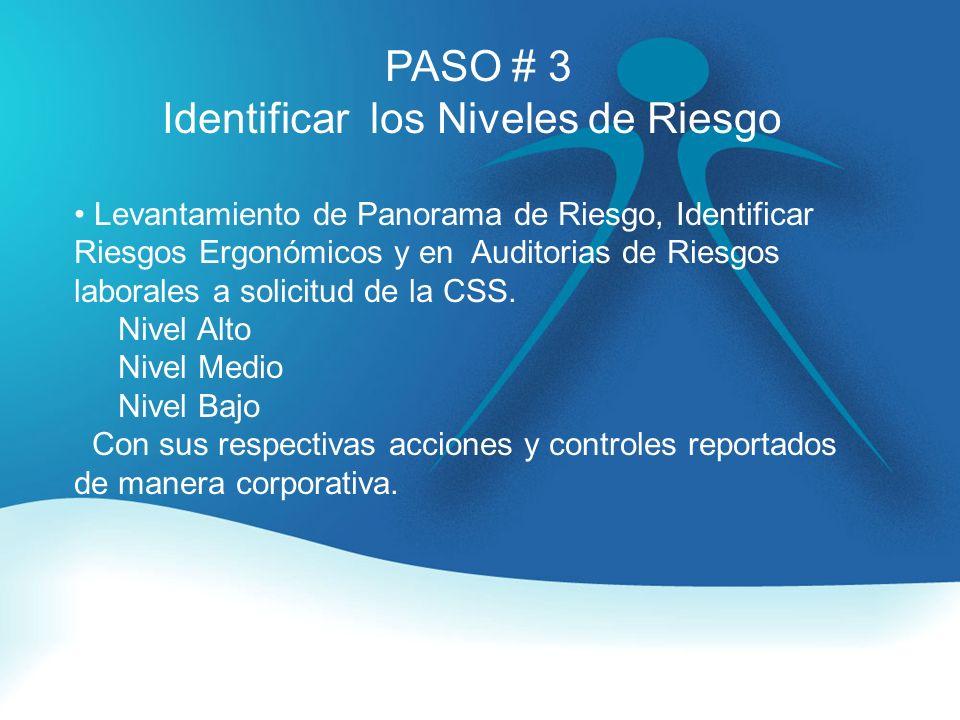 PASO # 3 Identificar los Niveles de Riesgo Levantamiento de Panorama de Riesgo, Identificar Riesgos Ergonómicos y en Auditorias de Riesgos laborales a solicitud de la CSS.