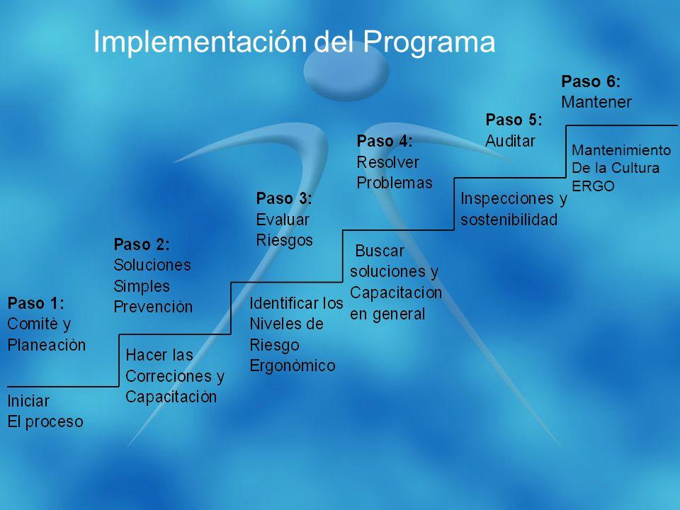Paso 6: Mantener Mantenimiento De la Cultura ERGO Implementación del Programa