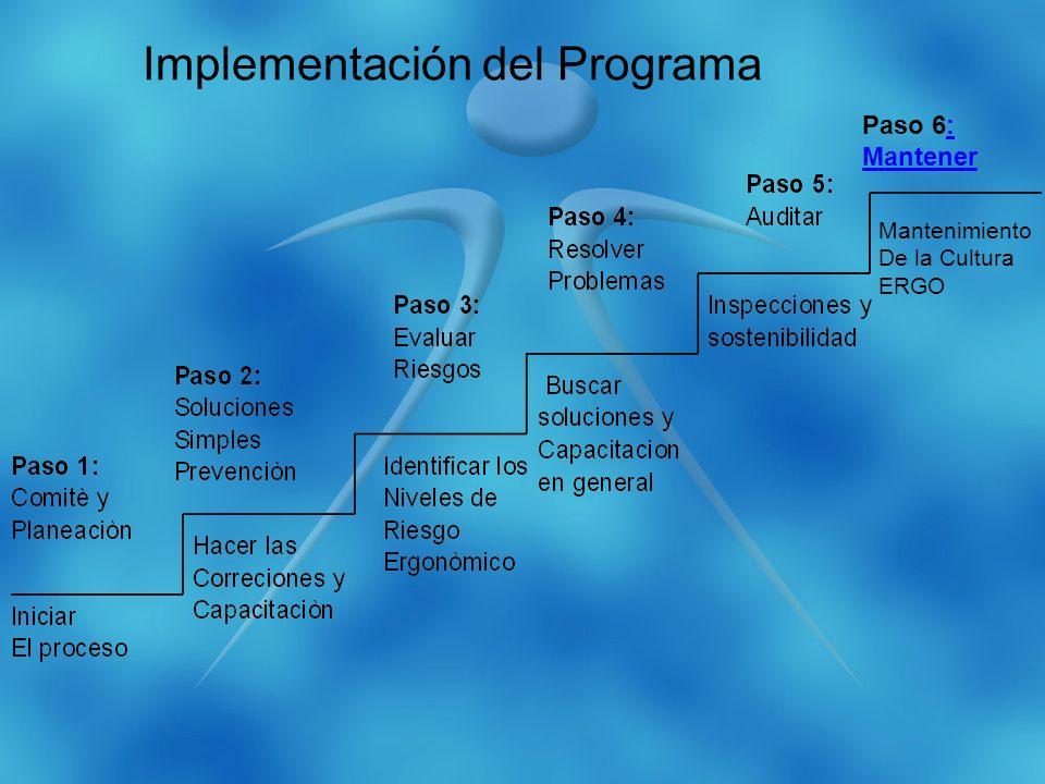 Paso 6:: Mantener Mantenimiento De la Cultura ERGO Implementación del Programa