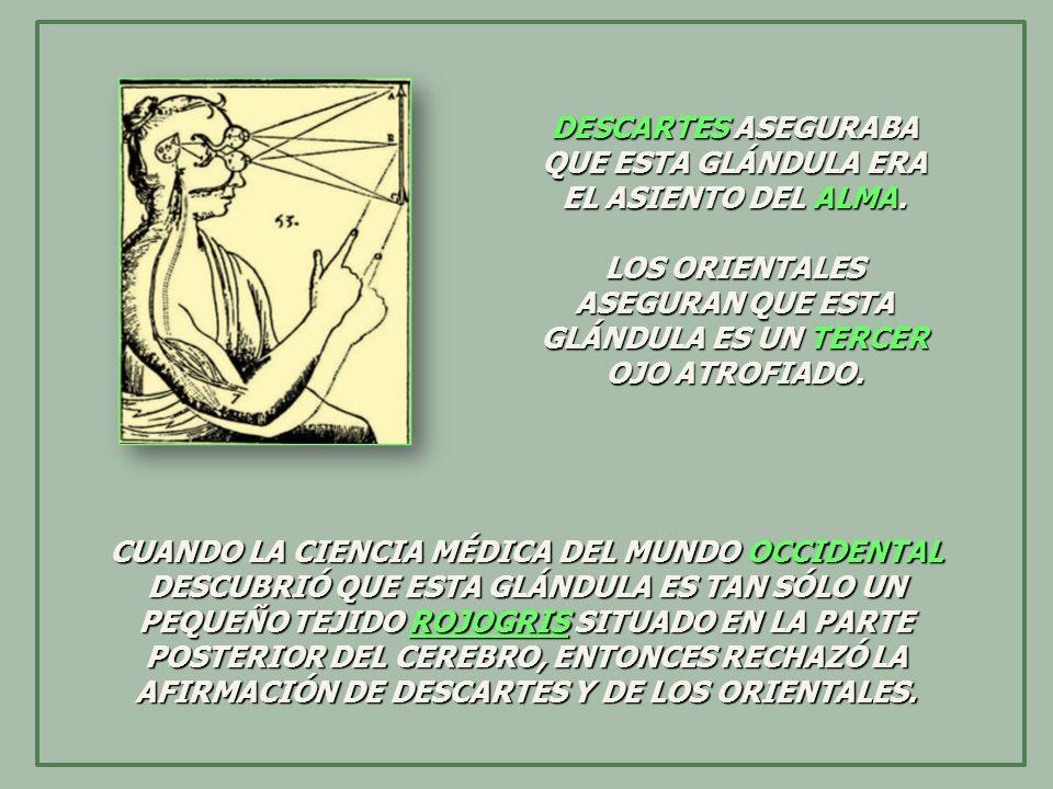 MEJOR HUBIERA SIDO NO SENTAR DOGMAS CIENTÍFICOS Y ESTUDIAR TODOS LOS CONCEPTOS EN FORMA ECLÉCTICA Y DIDÁCTICA.
