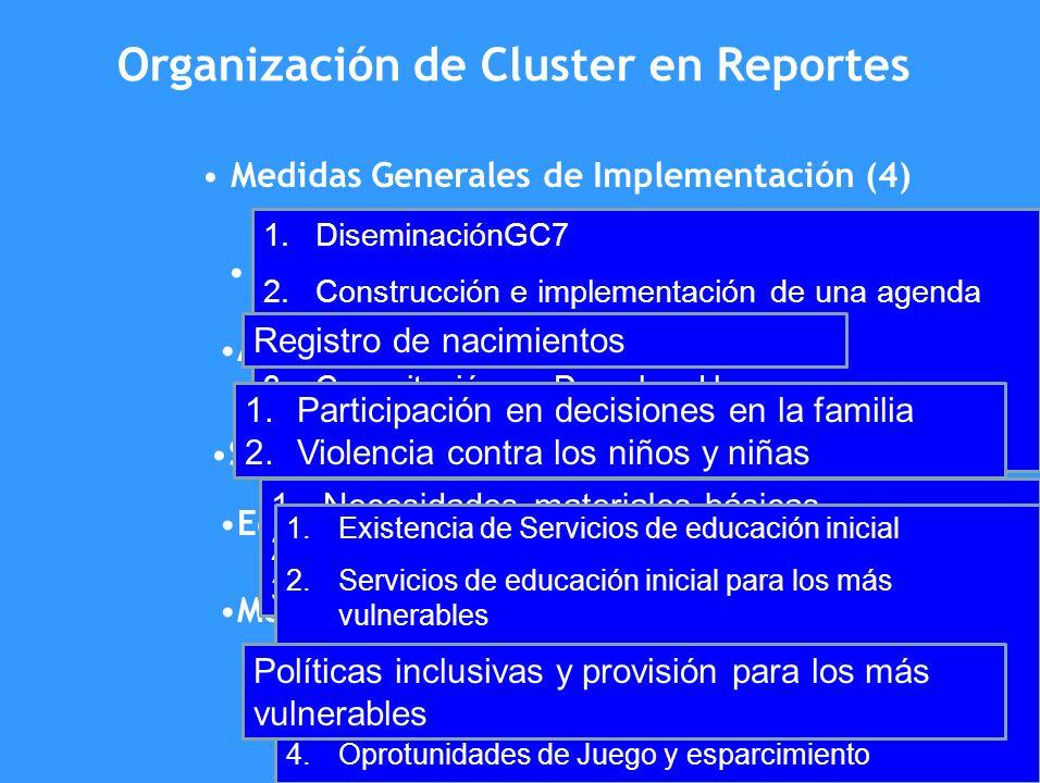 Organización de Cluster en Reportes Medidas Generales de Implementación (4) Derechos civiles y libertad(1) Ambiente familiar y cuidado alternativo (2)