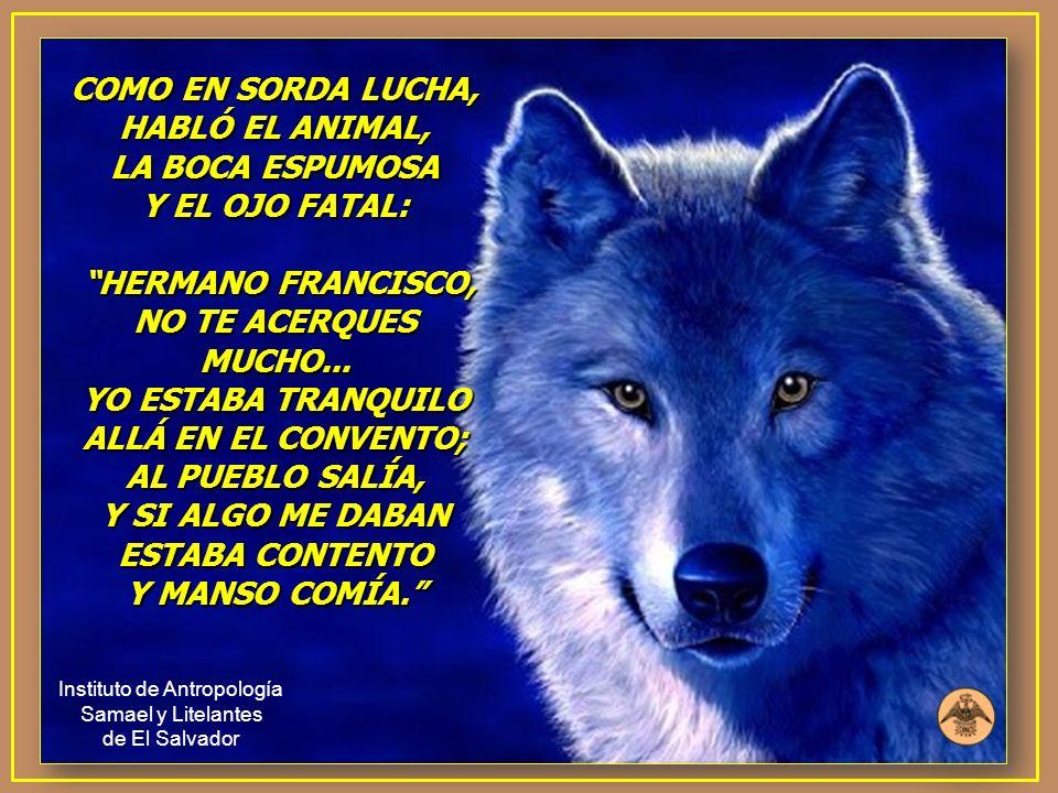 COMO EN SORDA LUCHA, HABLÓ EL ANIMAL, LA BOCA ESPUMOSA Y EL OJO FATAL: HERMANO FRANCISCO, NO TE ACERQUES MUCHO... YO ESTABA TRANQUILO ALLÁ EN EL CONVE