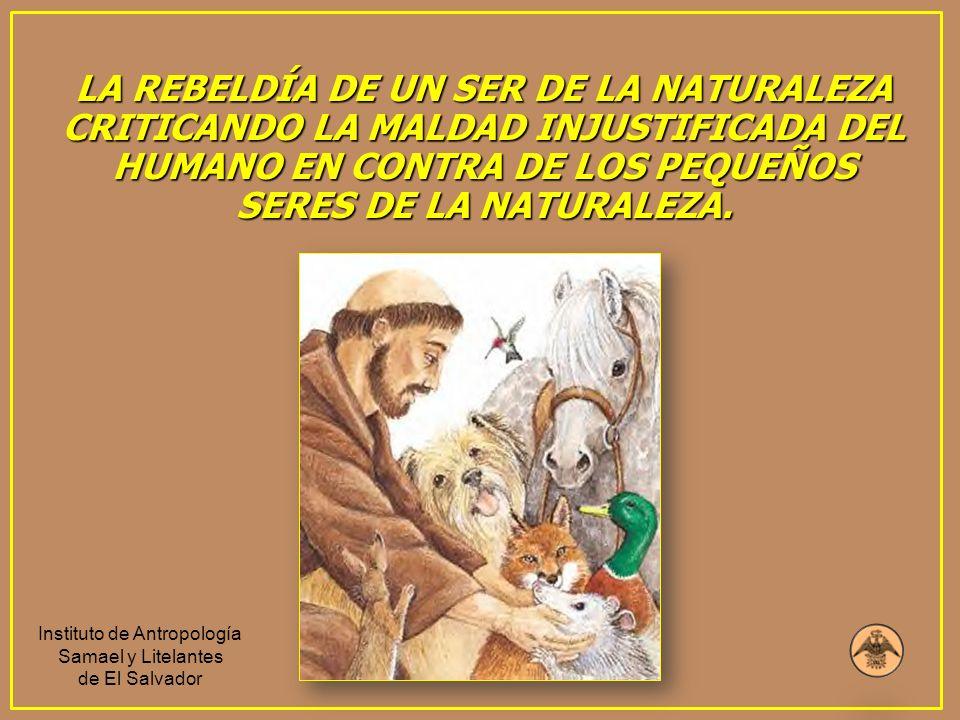 LA REBELDÍA DE UN SER DE LA NATURALEZA CRITICANDO LA MALDAD INJUSTIFICADA DEL HUMANO EN CONTRA DE LOS PEQUEÑOS SERES DE LA NATURALEZA. Instituto de An