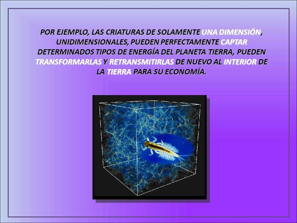 POR EJEMPLO, LAS CRIATURAS DE SOLAMENTE UNA DIMENSIÓN, UNIDIMENSIONALES, PUEDEN PERFECTAMENTE CAPTAR DETERMINADOS TIPOS DE ENERGÍA DEL PLANETA TIERRA,