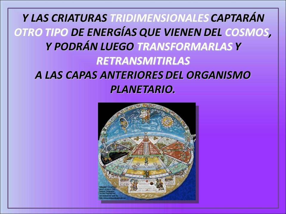 Y LAS CRIATURAS TRIDIMENSIONALES CAPTARÁN OTRO TIPO DE ENERGÍAS QUE VIENEN DEL COSMOS, Y PODRÁN LUEGO TRANSFORMARLAS Y RETRANSMITIRLAS A LAS CAPAS ANT