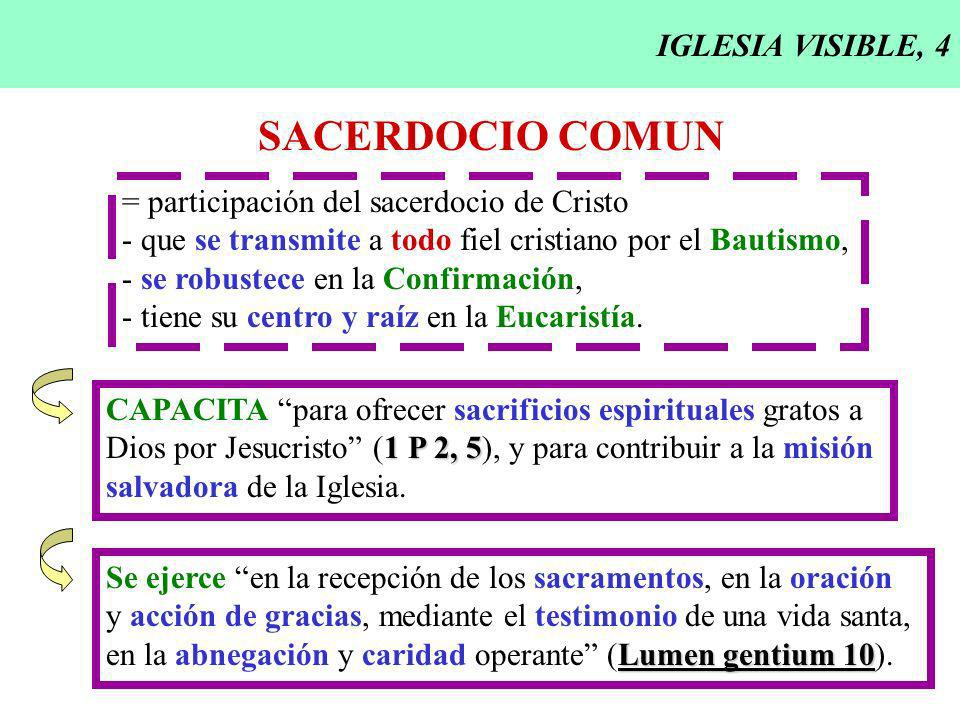 IGLESIA VISIBLE, 4 SACERDOCIO COMUN = participación del sacerdocio de Cristo - que se transmite a todo fiel cristiano por el Bautismo, - se robustece en la Confirmación, - tiene su centro y raíz en la Eucaristía.